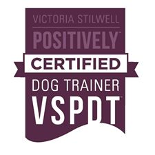 Certified VSPDT dog trainer